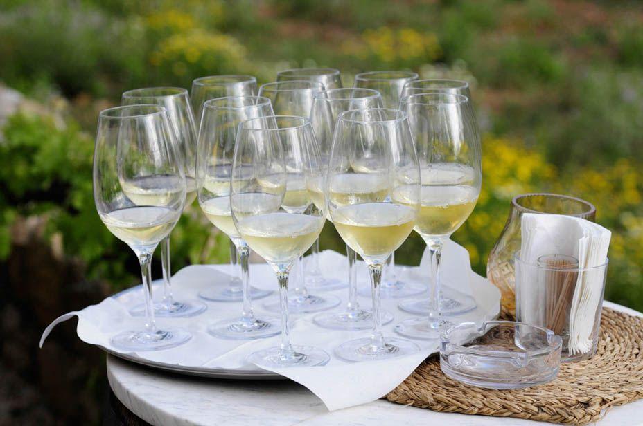 winetasting Mallorca